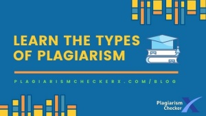 what are plagiarism type